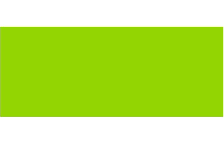 Informação Nutricional - FERRO QUELATO
